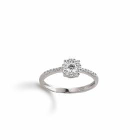 Ring · K11254
